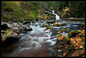 Waterfall along Siouxon Creek
